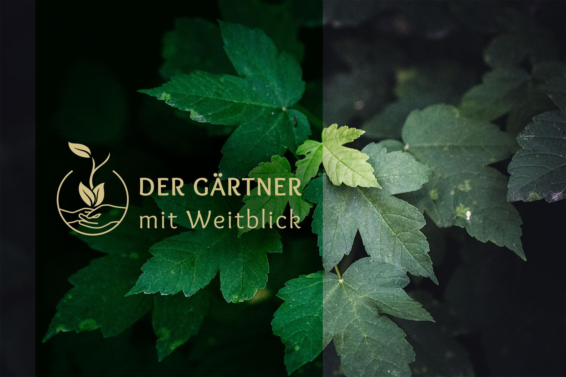 Der Gärtner mit Weitblick Logo vor grünen Blättern